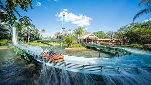busch gardens theme park in tampa florida