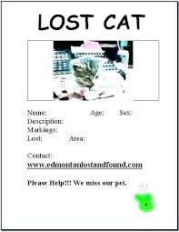 Lost Cat Flyer Lost Cat Template