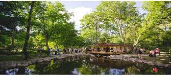 szentendre japanese public garden project