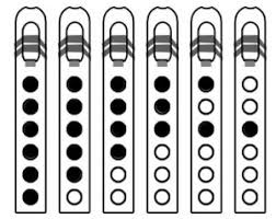 Mary Had A Little Lamb Flute Finger Chart 12 Scales To Play On Native American Flute Flute Craft