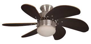 30 Ceiling Fan Light