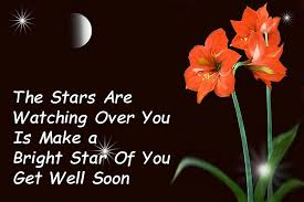 Get Well Quotes Classy Get Well Soon Quotes Tips Of The Days