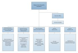 Csu Organizational Chart Home Deputy Vice Chancellor Students