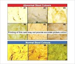Newborn Stool Color Chart Yellow Brown Stool Newborn Stool Color Chart Icsauklv Info