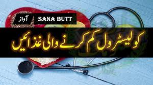 Diet Chart For Cholesterol Patient In Hindi Cholesterol Kam Karne Wale Food In Urdu Hindi Foods That