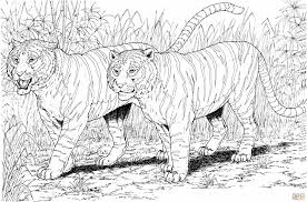 Small Picture Free Printable Kids Free Tiger Coloring Page Printable Kids