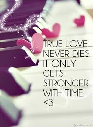 Best Love Quotes Of All Time Delectable 48 Best Love Quotes Of All Time