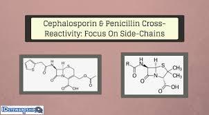 Cross Reactivity Between Cephalosporins And Penicillins A