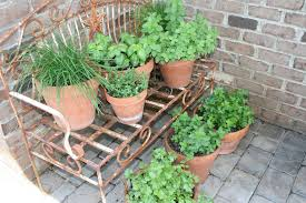 container herb garden diy projects