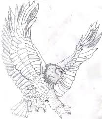 Small Picture Bald Eagle Pictures Free PrintableEaglePrintable Coloring Pages