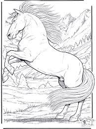Kleurplaten Wilde Paarden