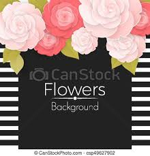 Paper Flower Frame Paper Flowers Background With Stripped Frame Black Middle And Roses