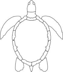 1a81c3a60f1c02ab7b4ba0d92137213e turtle outline md gourd tools and patterns pinterest sea on frame outline template