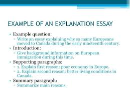 example of essays essays examples info example