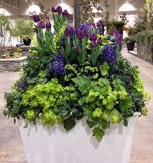 Container Garden Ideas Photos