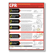 Free Printable Cpr Chart Hd Wallpapers Printable Cpr Chart Qld Wallpaper