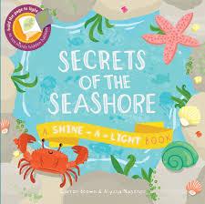 Shine The Light Usborne Secrets Of The Seashore A Shine A Light Book Shine A Light