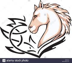 horse head clip art color. Unique Color Tattoo With Horse Head Color Vector Illustration On Horse Head Clip Art A