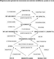 ЭЛЕМЕНТАРНАЯ СЕНСОРНАЯ ПСИХИКА это что такое ЭЛЕМЕНТАРНАЯ  Нормальное развитие психики на основе симбиоза души и тела