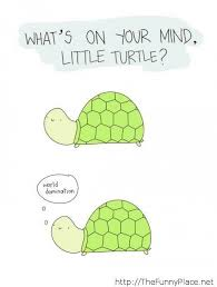 Turtle Quotes world domination quote TheFunnyPlace 22