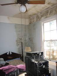 it safe to sleep in a house with mold