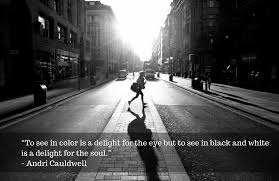 Quotes About Black And White Inspiration 48 Inspirational Quotes On Black White Photography