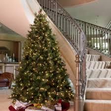 national tree pany christmas trees hayneedle national tree company dunhill fir y18