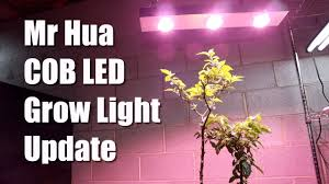 200 Watt Grow Light Mr Hua 200 Watt Cob Grow Light Update