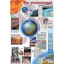 Wall Chart The Environment Teachershop