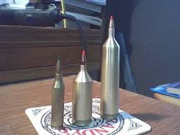 Image result for 50 cal wildcat cartridges