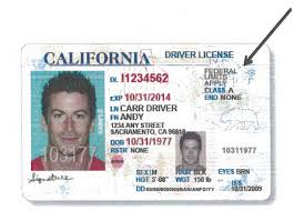 Hit com Road With Ca The Driver's Calwatchdog Undocumented Immigrants Licenses