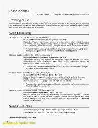 21 Resume Community Service Professional Template Best Resume