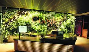 google hq office. Google Hq Office