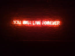 Neon Lights Live Neon Lights You Will Live Forever Djordje Radovanovic