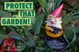 cheap garden gnomes. Angry Garden Gnome Resting In A Beautiful Garden. Cheap Gnomes