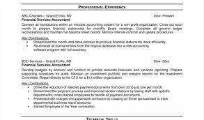 Sample Cfo Resume - Costumepartyrun