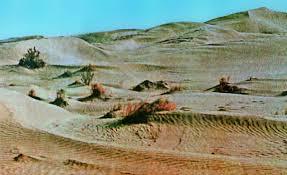 Пустыня это что такое какие определение значение доклад  Пустыня