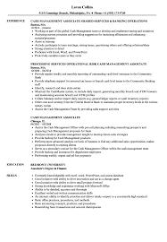 Cash Management Associate Resume Samples Velvet Jobs