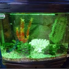 fish tank lighting ideas. US Plug LED Sucker Tube Lamp Green Light Color Decoration Aquarium Fish Tank Air Bubble Lighting Ideas
