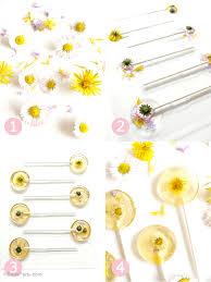 honey lemon fl lollipops recipe birdsparty com