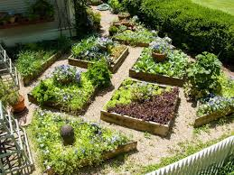 perfect setting up raised garden beds and raised beds and proper planning for the construction of