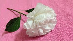 Paper Flower Tissue Paper How To Make Tissue Paper Flowers Making Tissue Paper Flowers Paper Flower Tutorial
