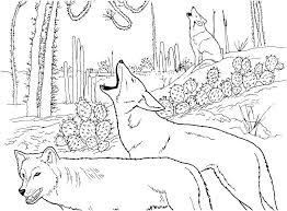 desert coloring pages printable f1045 desert coloring
