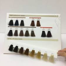 Color Chart For Hair Color Removable Hair Color Swatches Hair Color Cream Chart