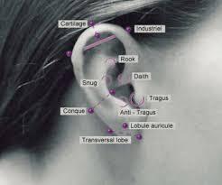 Chart Of Ear Piercings Ear Piercing Chart Tumblr