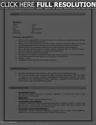 Sap Bo Resume Resume Template