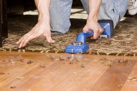 hardwood flooring cost compared to carpet