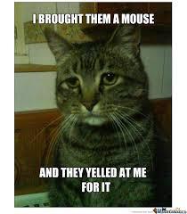 Depressed Cat by recyclebin - Meme Center via Relatably.com