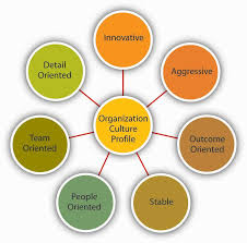 measuring organizational culture dimensions of culture