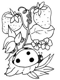 Ladybug And Strawberry Coloring Page To